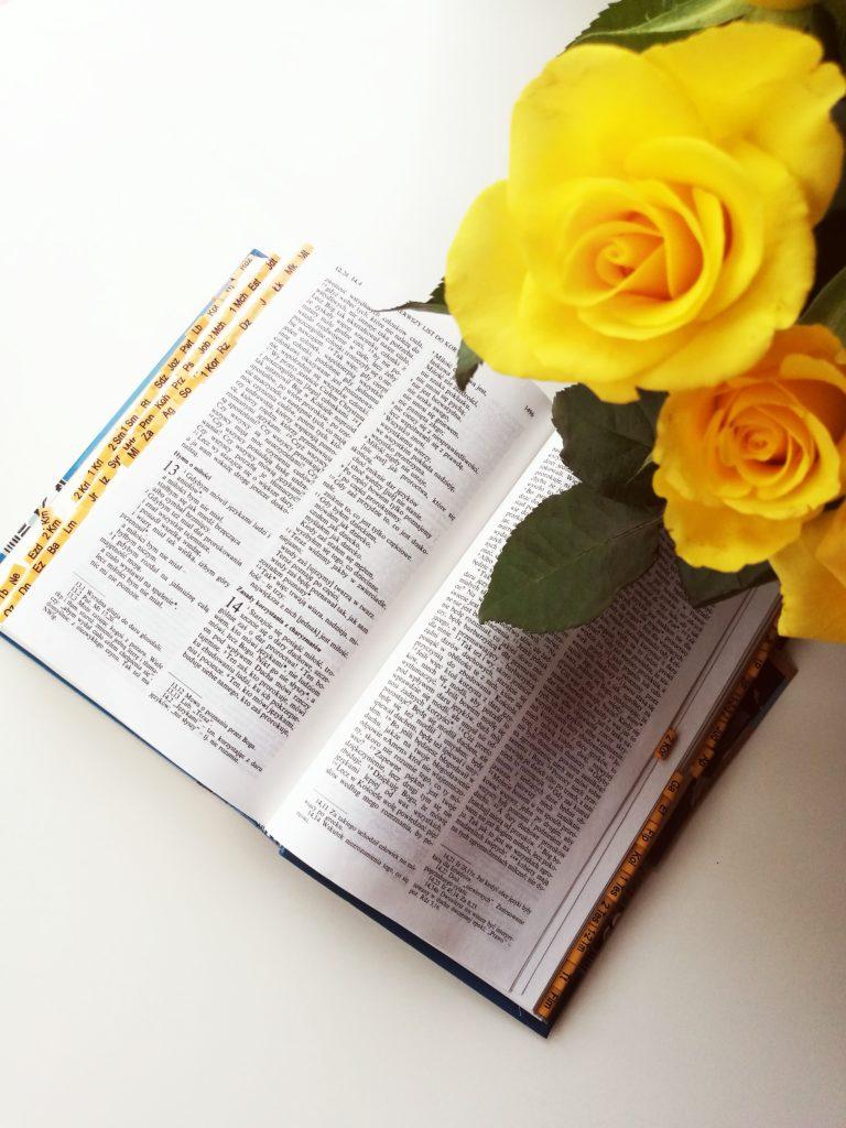 ślub kościelny, nauki przedmałżeńskie